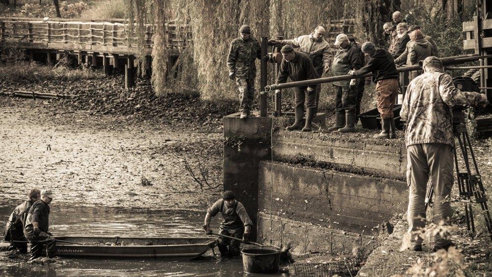 Ostravská ZOO připravila návštěvníkům v sobotu tradiční výlov rybníka spojený s prodejem ryb