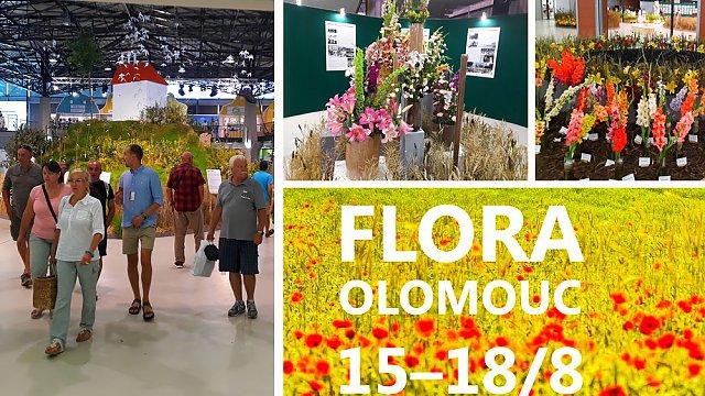 Flora Olomouc 2019 obrazem: Mezinárodní zahradnická výstava s návštěvou sbírkových skleníků